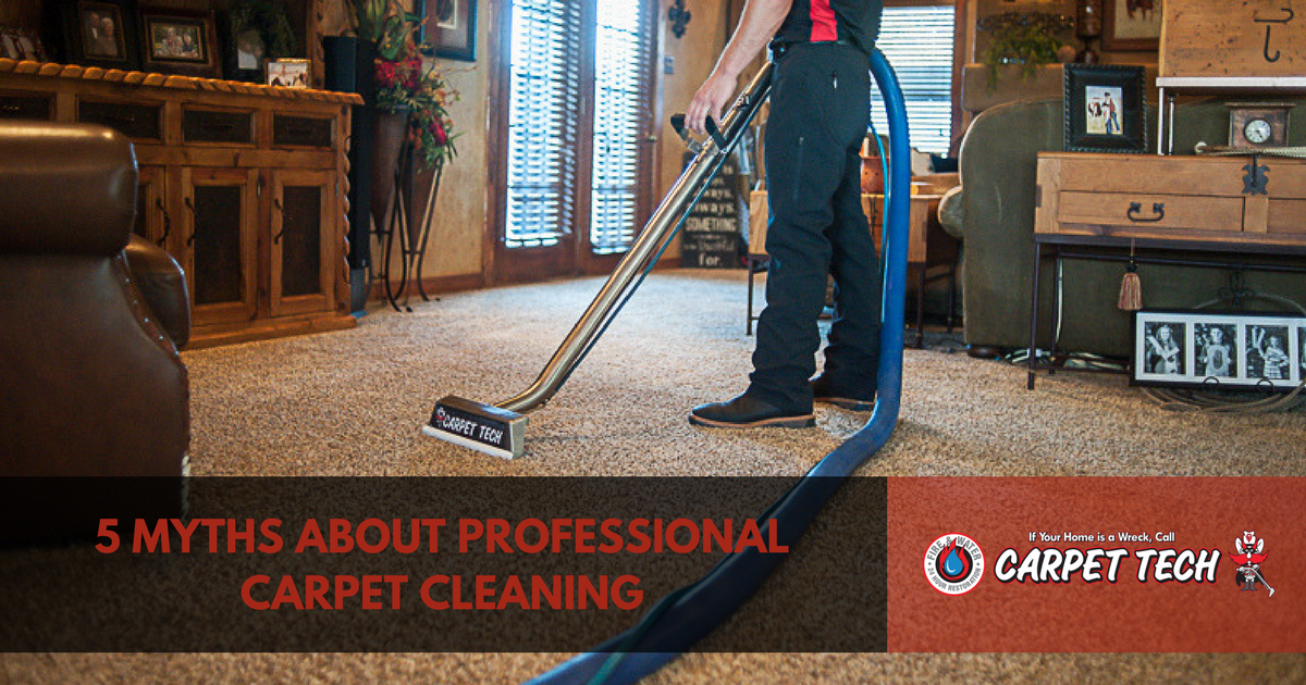 5 Myths about professional carpet cleaning