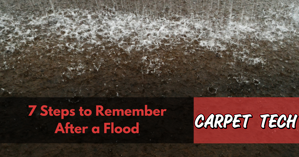 7 Steps To Remember After a Flood
