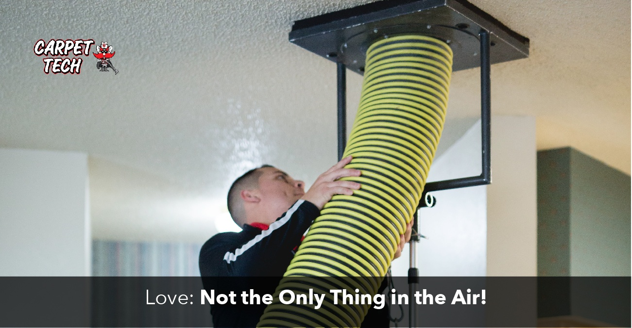 Love Isn't the Only Thing in the Air: A Closer Look at Air Duct Cleaning