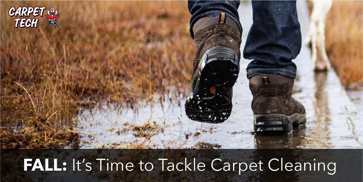 Fall: It's Time to Tackle Carpet Cleaning