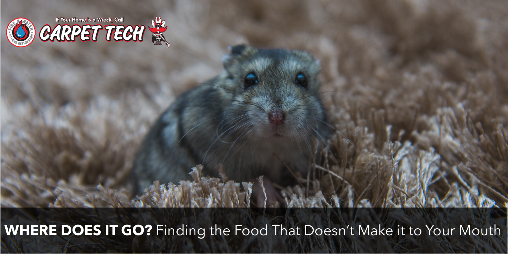 Where Does it Go? Finding the Food That Doesn't Make it to Your Mouth