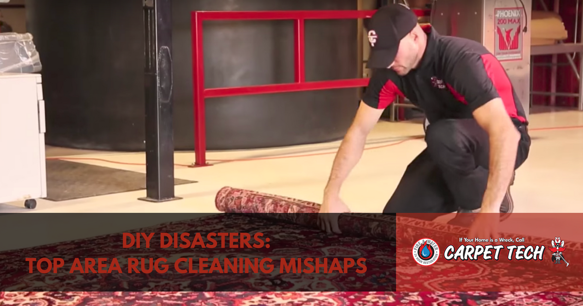 DIY Disasters: Top Area Rug Cleaning Mishaps