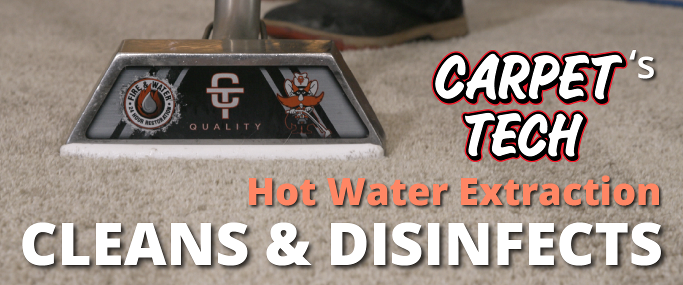 Carpet Tech's Hot Water Extraction Cleans and Disinfects