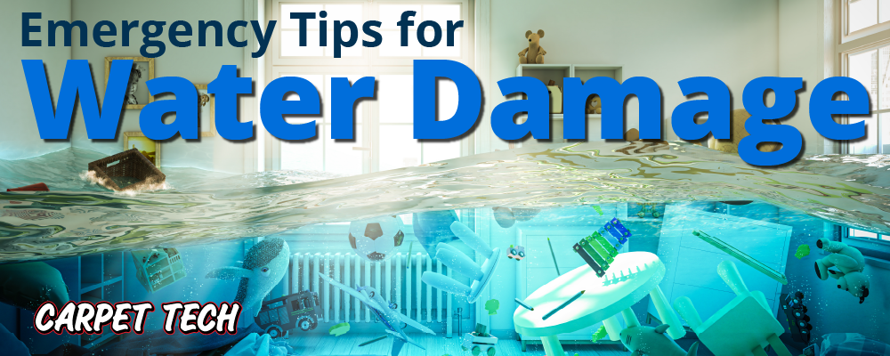 EMERGENCY TIPS FOR WATER DAMAGE