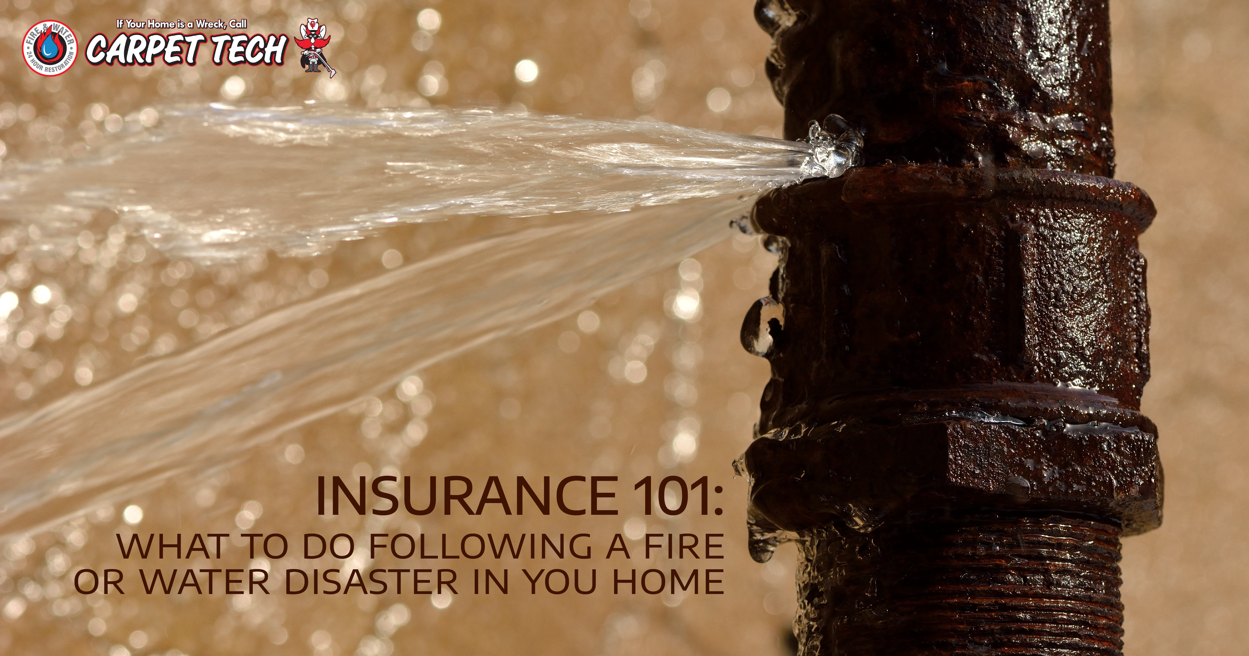 Insurance 101: What To Do Following a Fire or Water Disaster in Your Home